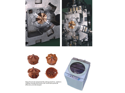 Impeller Mould of Washing Machine Mould